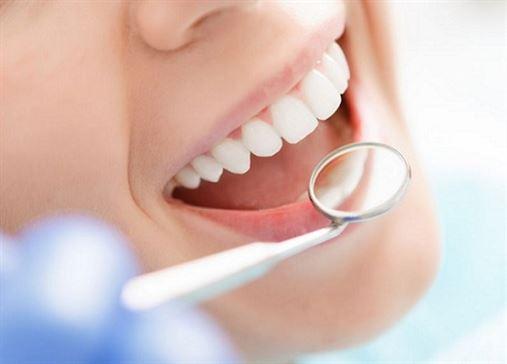 Você saberia dizer se os dentes são ossos?