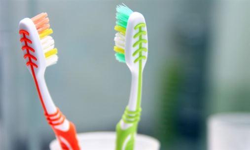 Estudo revela que mais de 60% das escovas de dentes são contaminadas no banheiro