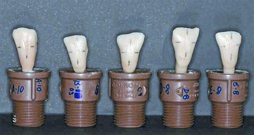 Avaliação da resistência ao cisalhamento de tubos de colagem ortodônticos
